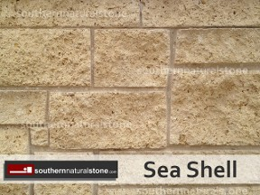Sea Shell, Saw Cut 468, Southern Stone